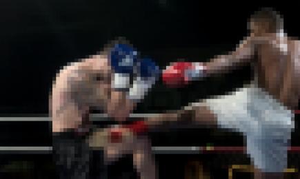 Vervolgonderzoek relatie tussen full contact vechtsport en criminaliteit