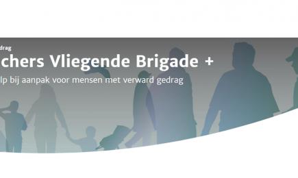 DSP-adviseurs onderdeel Vliegende Brigade + van ZonMw