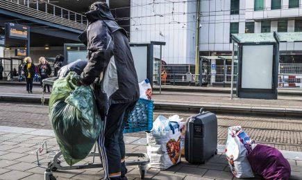 Advies Wet verplichte GGZ gemeente Amsterdam
